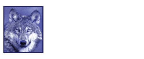 blue wolf publishing